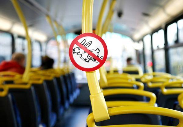 Минтранс предлагает запретить высаживать из общественного транспорта детей-безбилетников