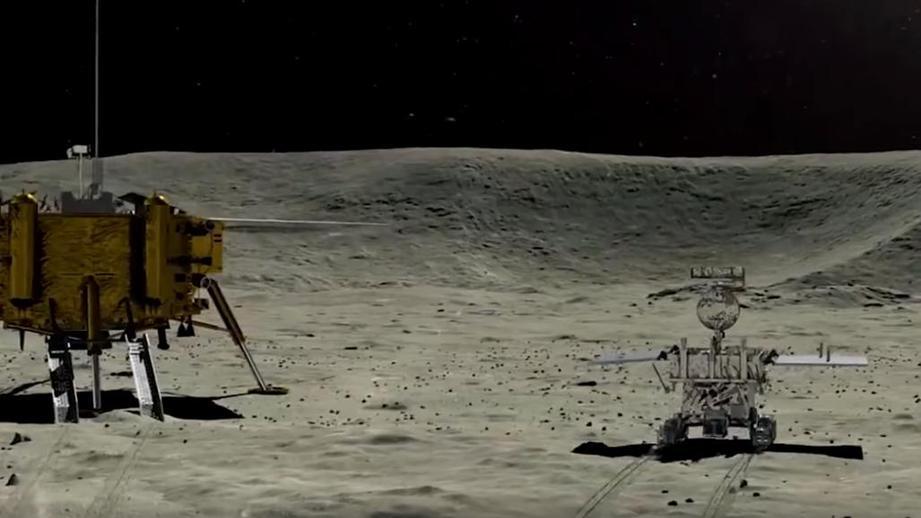 Высаженные на Луне семена хлопка дали первые всходы