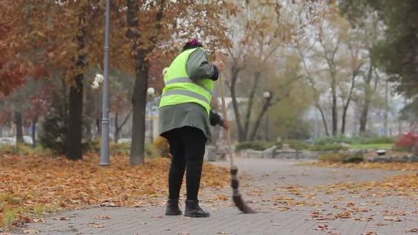 Одна женщина уберет Гагаринский район Севастополя за 132 млн рублей