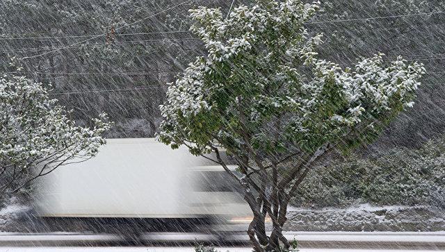 На пороге стихии: синоптики рассказали о погоде в Крыму с 3 по 5 января