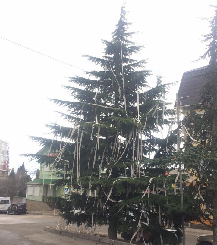 В Ялте елку украсили туалетной бумагой