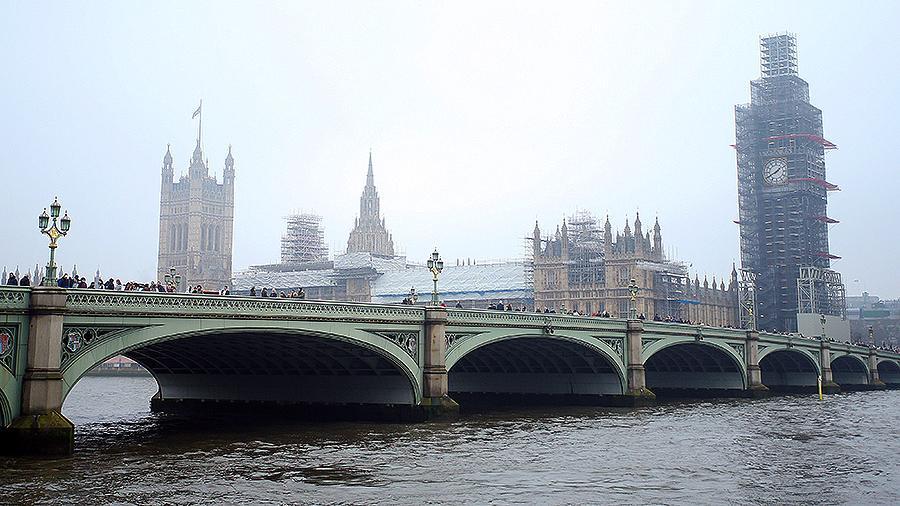 Концентрация кокаина в Темзе достигла опасного для угрей уровня