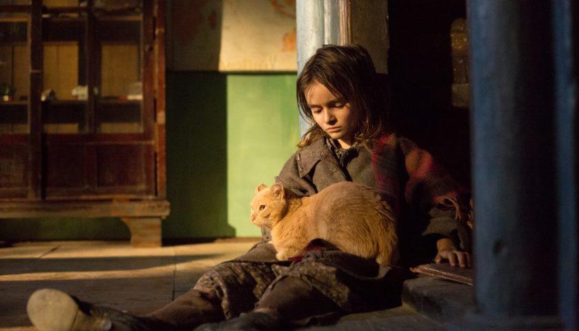 Кинокритики определили лучшие российские фильмы 2018 года