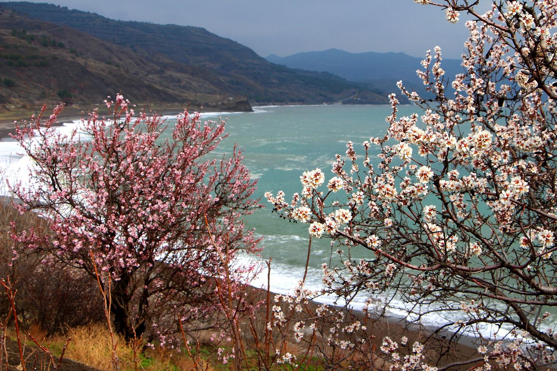 Весна или лютые морозы? Какой будет погода в Крыму и в Севастополе на следующей неделе