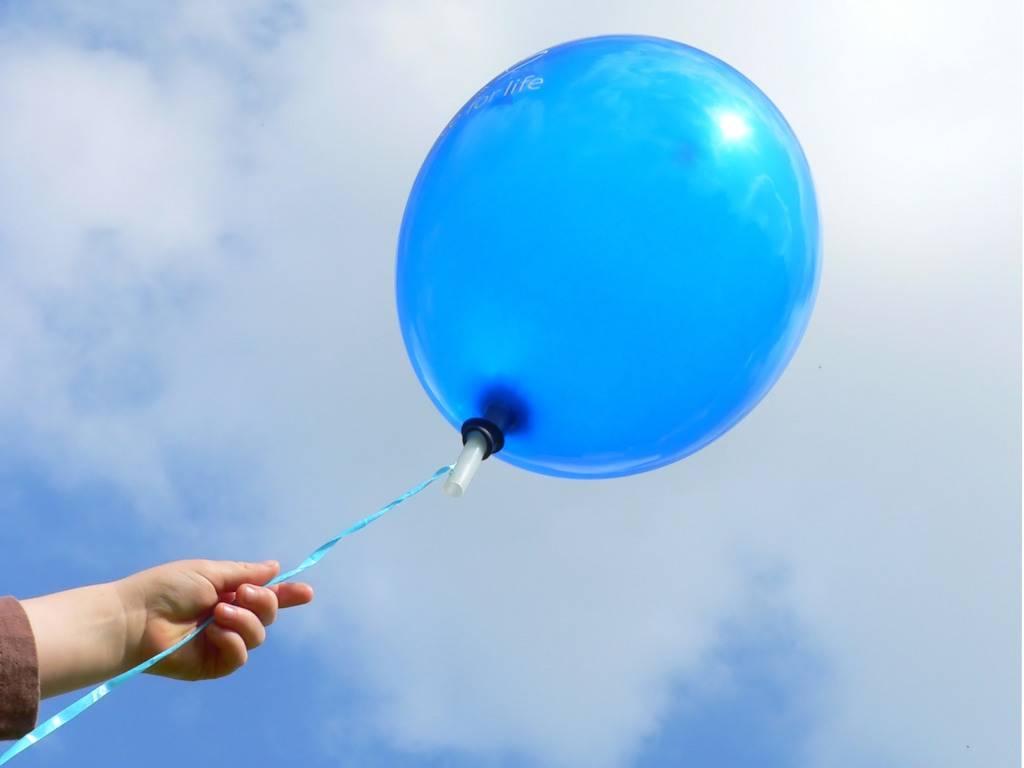 «Зато прославился»: в Севастополе подросток украл воздушные шарики с витрины