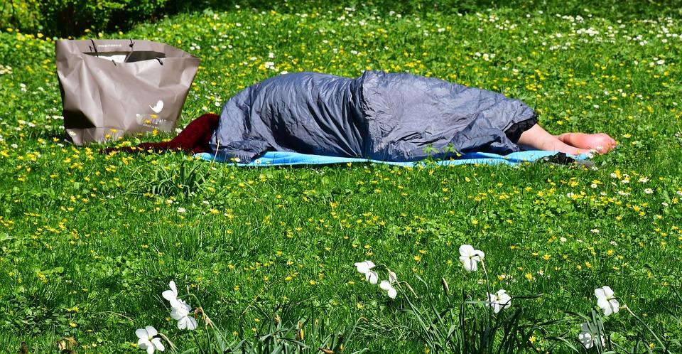 До начала курортного сезона улицы Ялты планируют очистить от бездомных