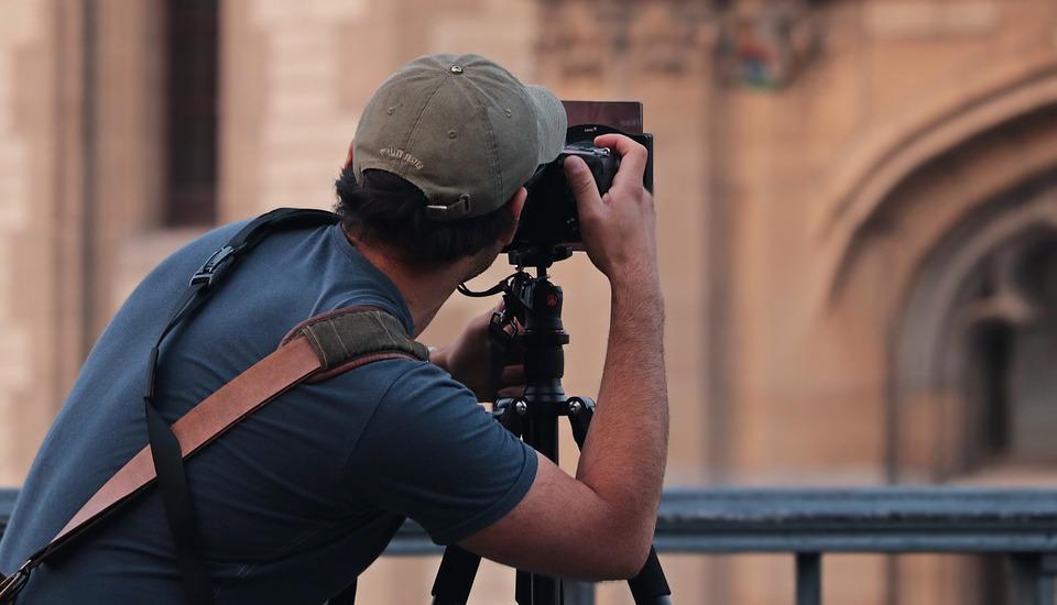 Найди сыча: фотограф случайно создал фотозагадку