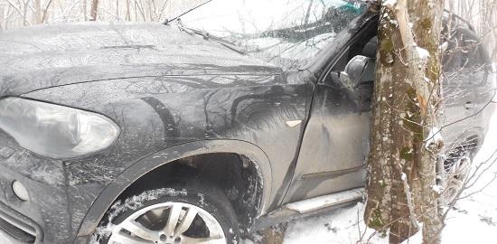 В Крыму BMW X5 влетел в дерево