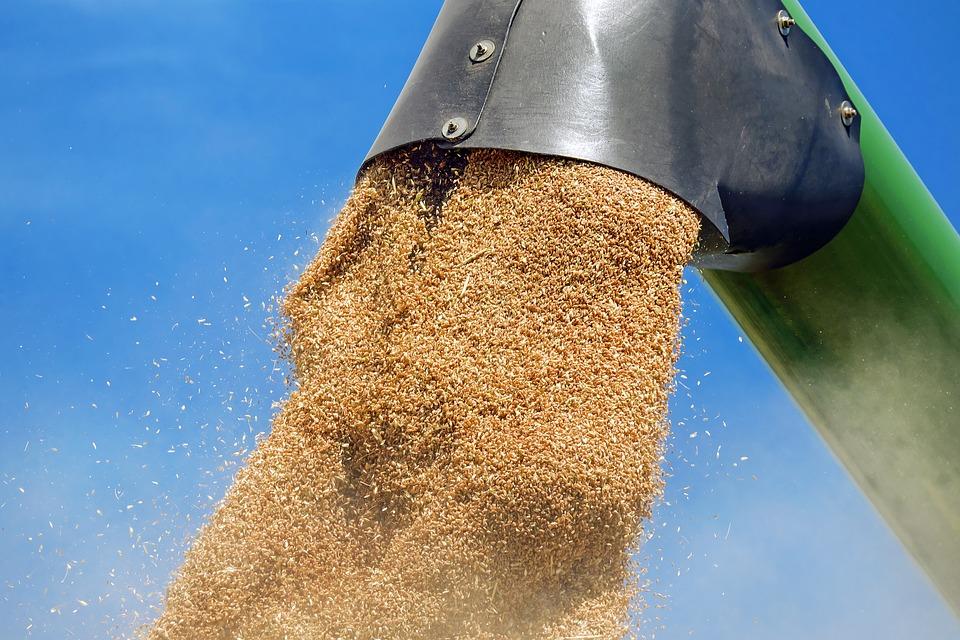 Пшеница, сода, трубы, посуда: в Сирию отправляют сборный груз крымских предприятий