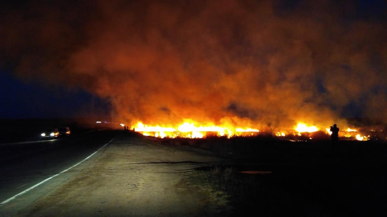 «Трасса в огне»: в Крыму горит камыш, движение ограничено – соцсети
