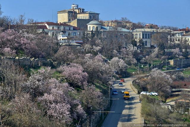 «Напрягает очень здорово»: что севастопольцы думают о работе Правительства и Заксобрания города