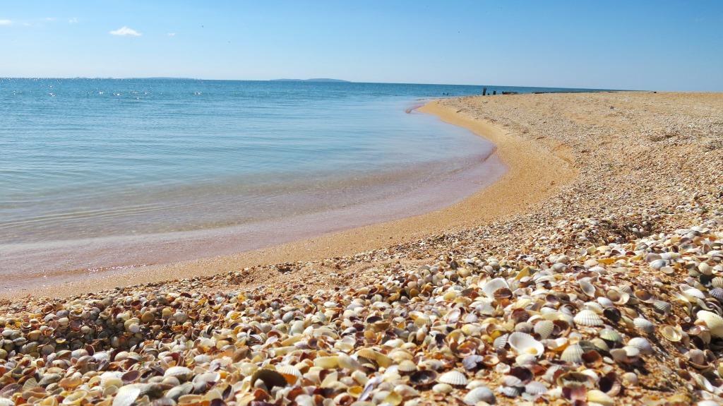 В курортный сезон в Крыму будут работать 460 пляжей