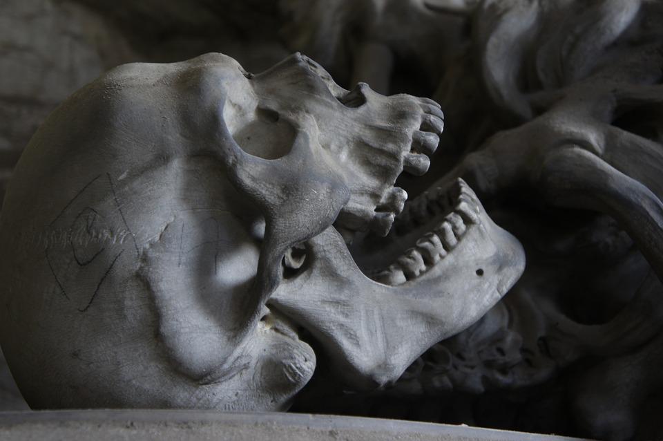 На субботнике в Евпатории нашли скелет человека в мешке