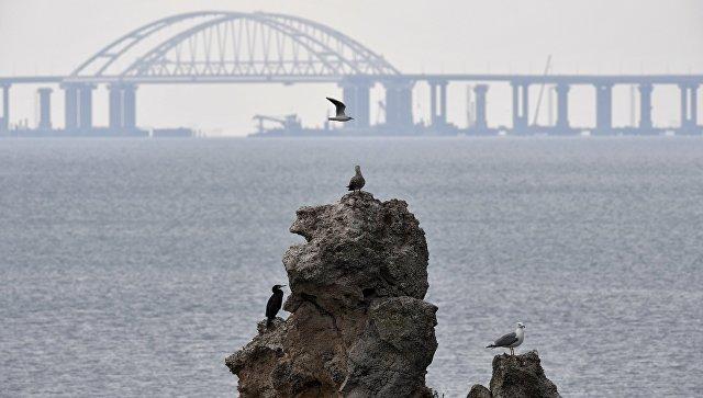 Лавров назвал условия прохода военных кораблей Украины через Керченский пролив