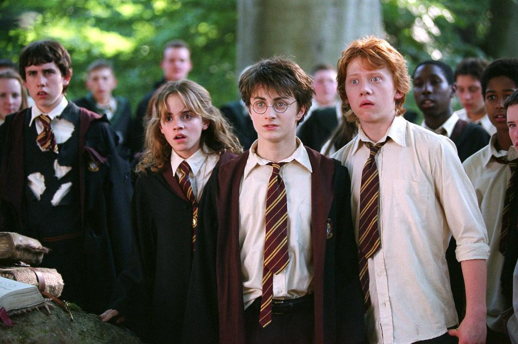 В Гданьске священники сожгли книги о Гарри Поттере