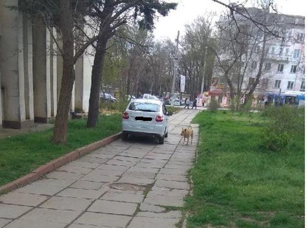 Возле керченской школы водитель чуть не сбил детей на тротуаре
