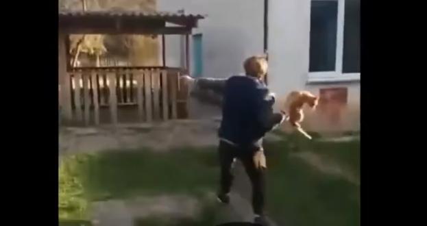 Крымские подростки сняли на видео издевательство над котом