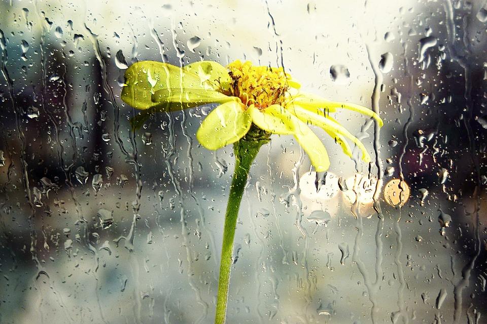 В Крыму ожидаются дождливые выходные — прогноз по городам