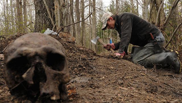 Двум севастопольцам вынесли приговор за кражу артефактов из могильника