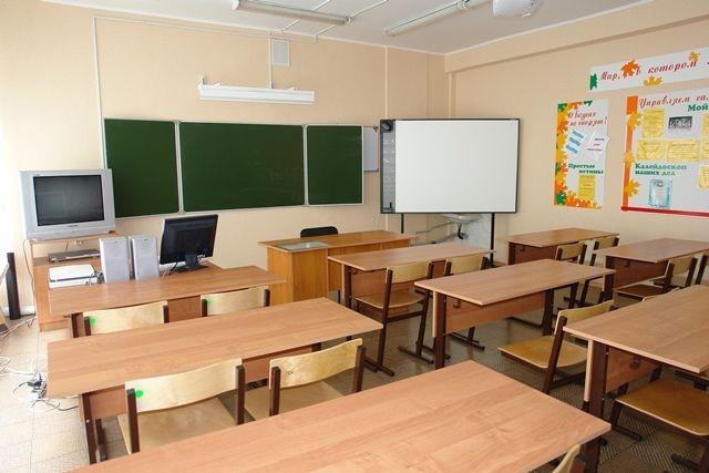 Школьник избил депутата «Единой России»