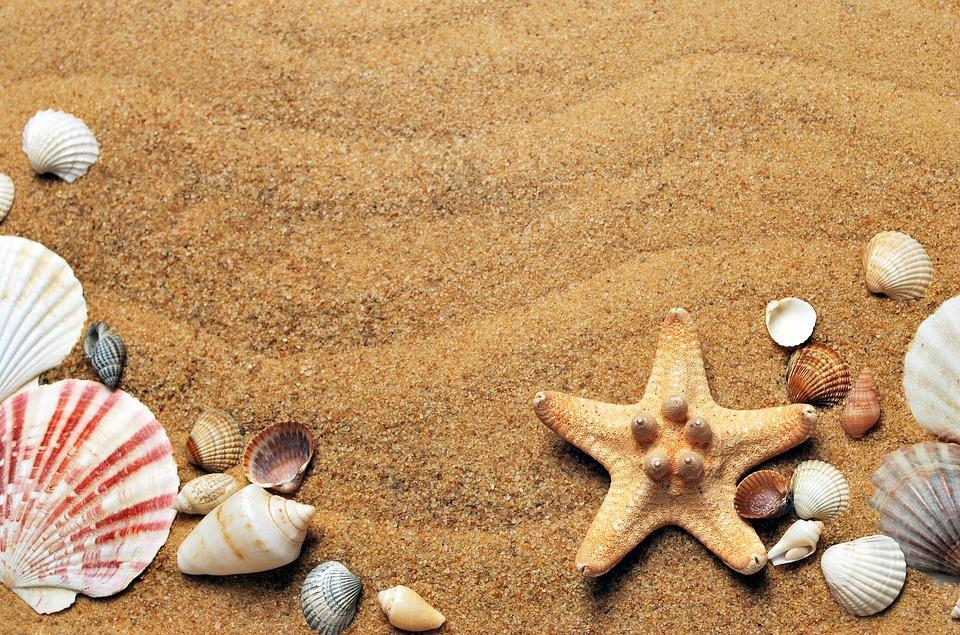 Подготовка к сезону: на севастопольском пляже монтируют новые раздевалки и навесы