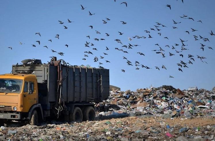 В Крыму прогнозируют мусорный апокалипсис