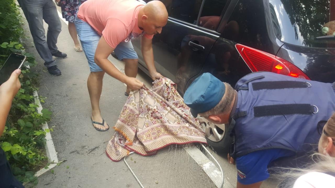 Работали сотрудники МЧС: сбежавшего из эко-парка енота вернули домой