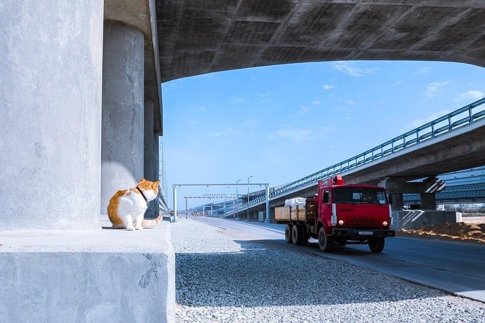 Главный прораб Крымского моста рассказал, как проводит летние деньки