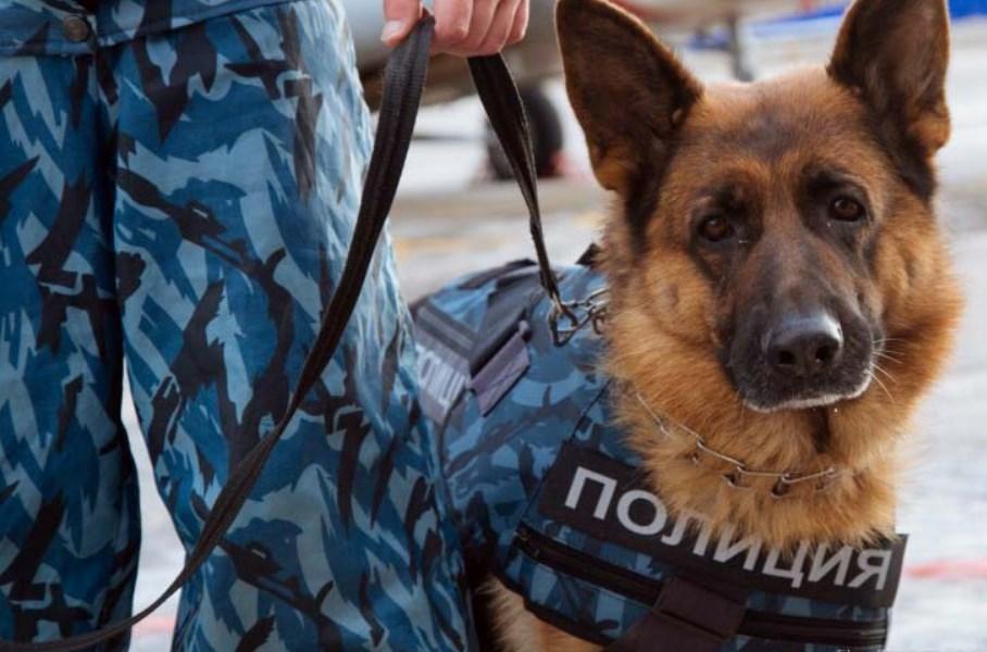 В Крыму из-за подозрительной сумки оцепили автовокзал