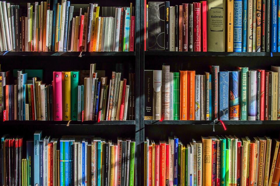 В Севастополе впервые пройдет ярмарка «Книжный бульвар»