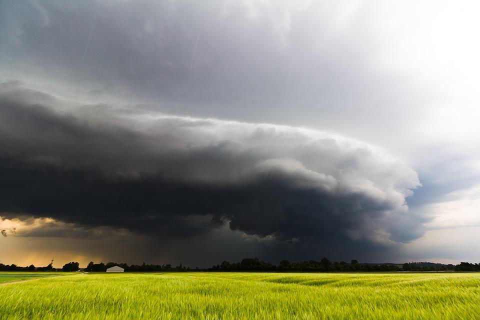 Кратковременные дожди, усиление ветра: прогноз погоды в Крыму на 1-3 августа