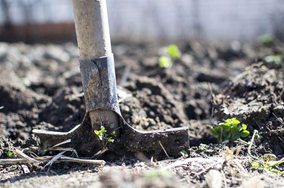 В Крыму пропавшего без вести мужчину нашли закопанным в земле с огнестрельным ранением