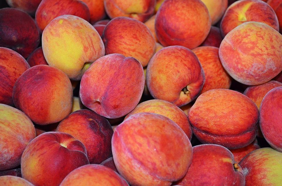 В Севастополе начался сбор урожая персика