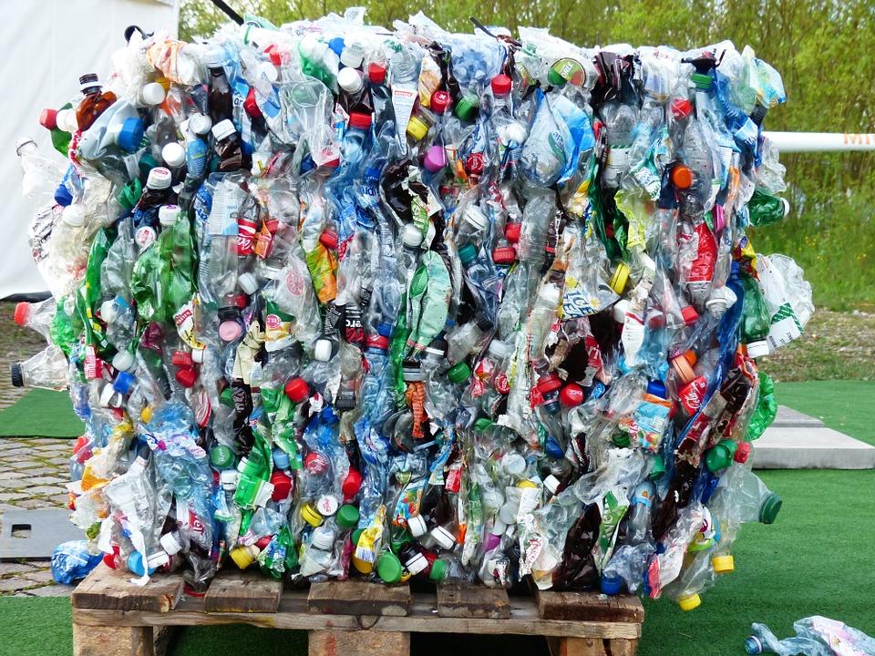 В Севастополе построят мусороперерабатывающий завод в формате эко-парка