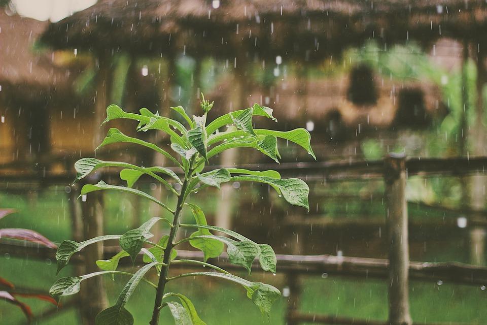 Атмосферный фронт принес в Крым дожди и похолодание: прогноз погоды на 10-12 июля