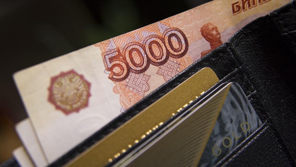 Назван самый распространенный размер зарплаты в России