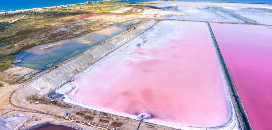Туристы в Крыму смогут посмотреть, как выращивают розовую соль
