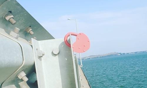 Молодожены заплатят штраф за романтику на Крымском мосту