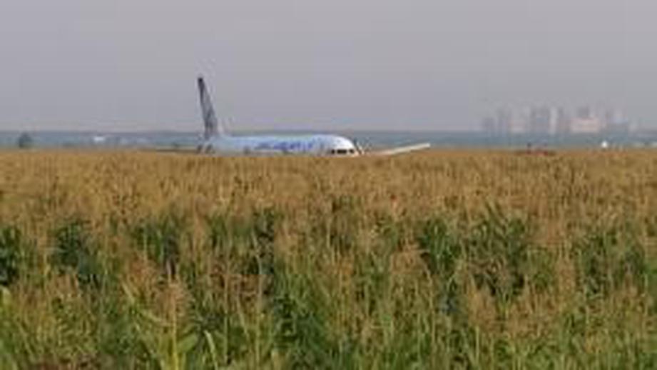 «Это удивительно»: посадку А-321 в Подмосковье сравнили с «чудом на Гудзоне»