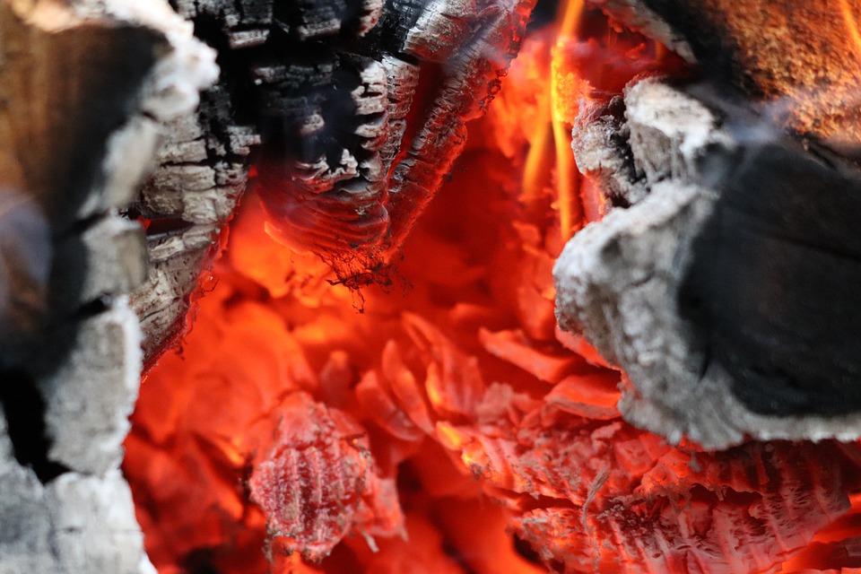 В Севастополе выгорел один гектар леса