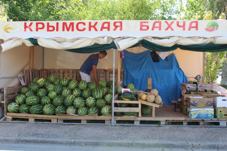 В Севастополе заработали 30 «бахчевых развалов»