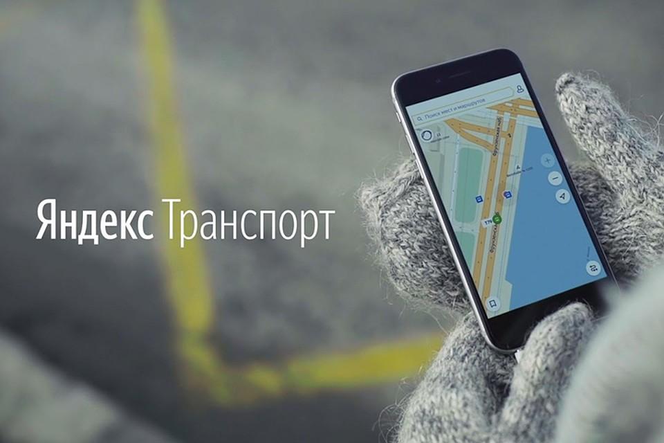 Стало известно, когда в Севастополе заработает «Яндекс. Транспорт»