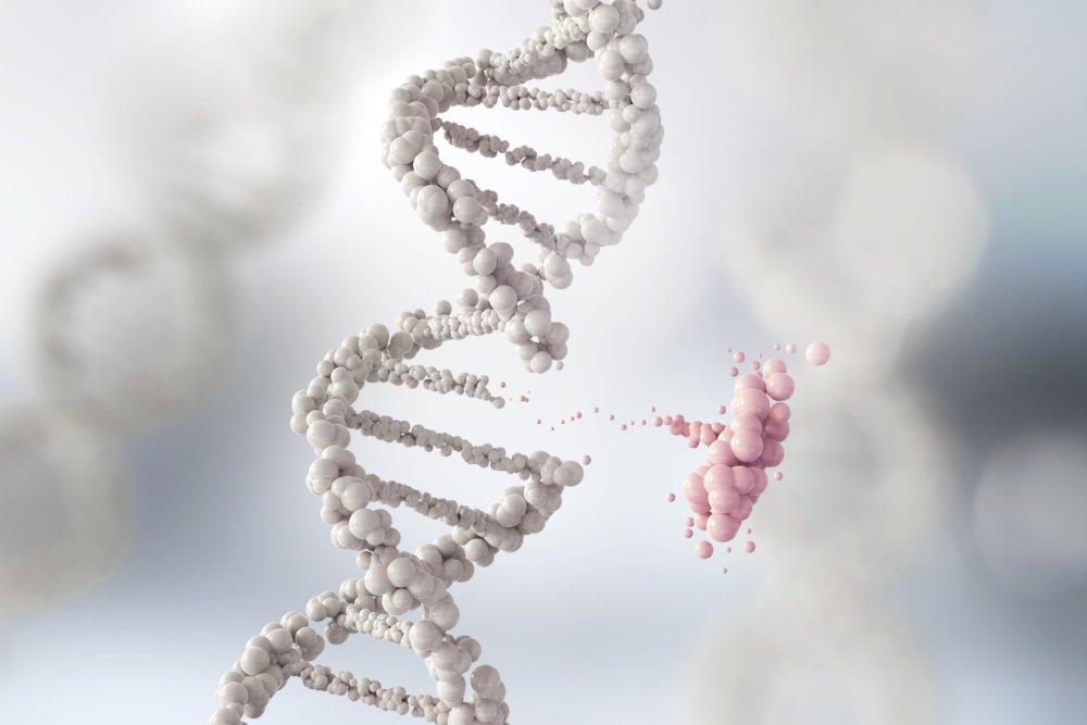 Ученые выяснили, какая пища резко увеличивает рост раковой опухоли