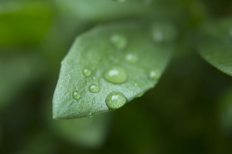 В Крыму местами пройдут дожди: прогноз погоды на 20-22 августа