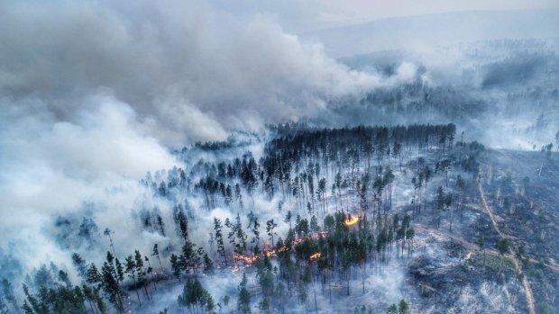 К тушению пожаров в Сибири привлекут Минобороны