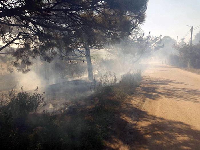 В Балаклаве произошел пожар из-за искры с опоры ЛЭП