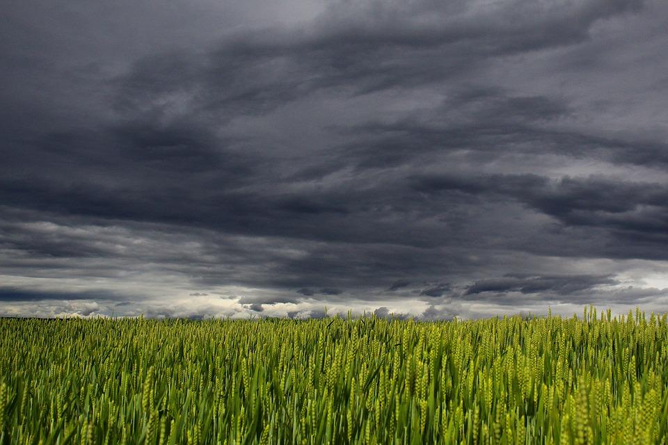 Холодный атмосферный фронт принес в Крым дожди с грозами (прогноз погоды на 18 – 20 сентября)