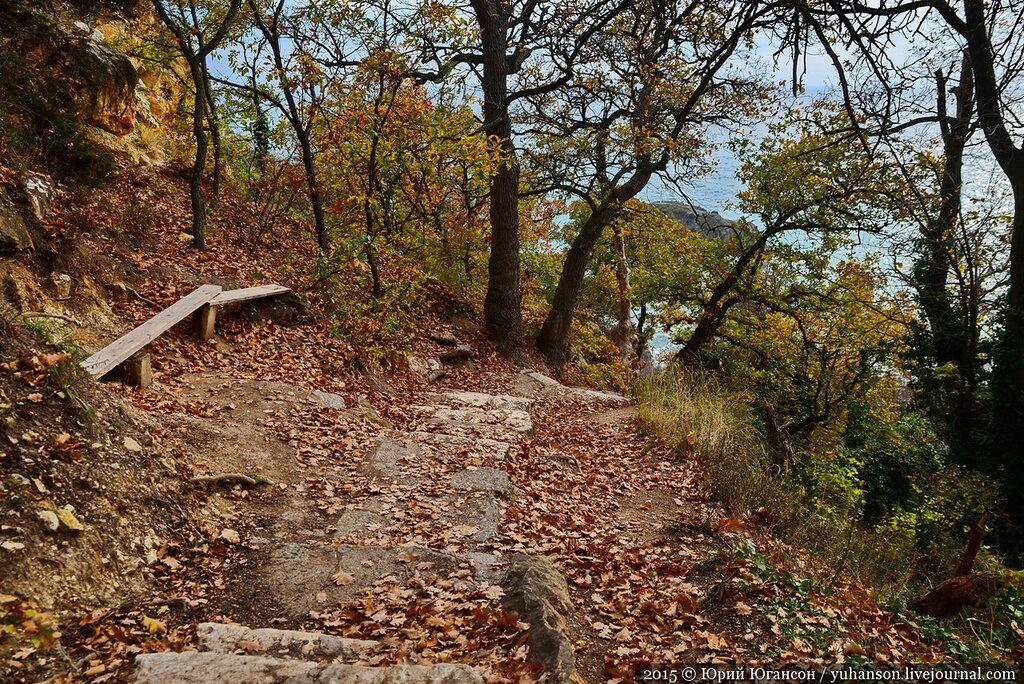 Подрядчик провалил реконструкцию лестницы к пляжу «Яшмовый»