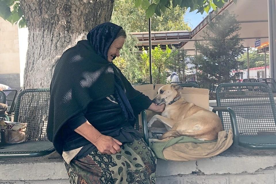 В Симферополе пенсионерка 10 лет живет на улице ради собаки
