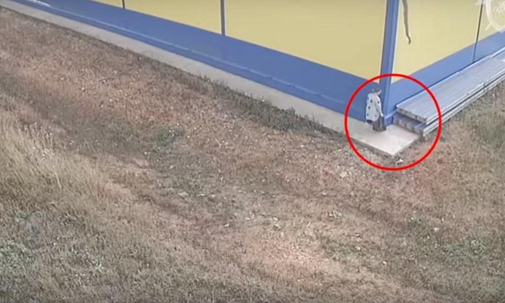 Женщина родила ребенка в кустах и оставила его в пакете у магазина